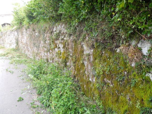 how to clean stone walls